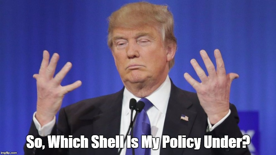 So, Which Shell Is My Policy Under? | made w/ Imgflip meme maker