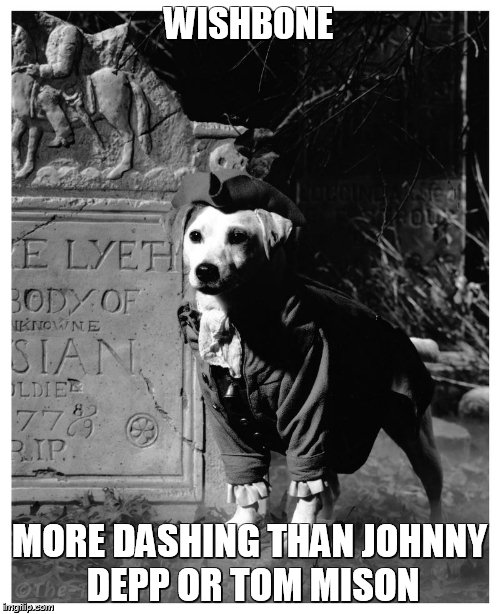Ichabod Crane - Wishbone | WISHBONE MORE DASHING THAN JOHNNY DEPP OR TOM MISON | image tagged in wishbone,the legend of sleepy hollow,washington irving | made w/ Imgflip meme maker