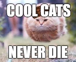 GET OVER HERE | COOL CATS NEVER DIE | image tagged in get over here,scumbag | made w/ Imgflip meme maker