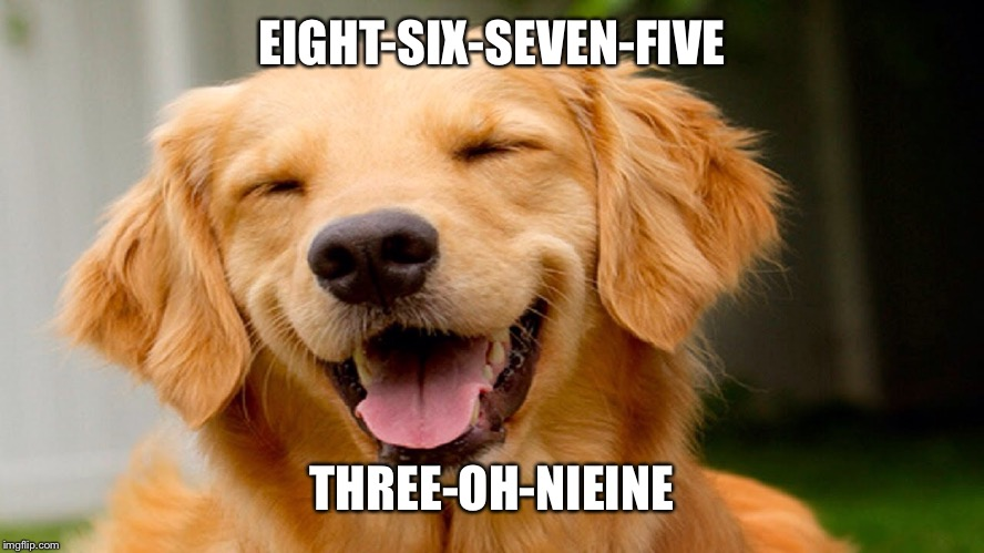 Laughing Dog | EIGHT-SIX-SEVEN-FIVE THREE-OH-NIEINE | image tagged in laughing dog | made w/ Imgflip meme maker