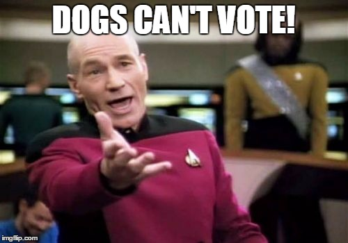Picard Wtf Meme | DOGS CAN'T VOTE! | image tagged in memes,picard wtf | made w/ Imgflip meme maker