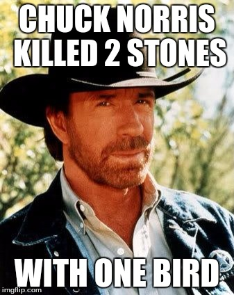 Chuck Norris |  CHUCK NORRIS KILLED 2 STONES; WITH ONE BIRD | image tagged in chuck norris,memes | made w/ Imgflip meme maker