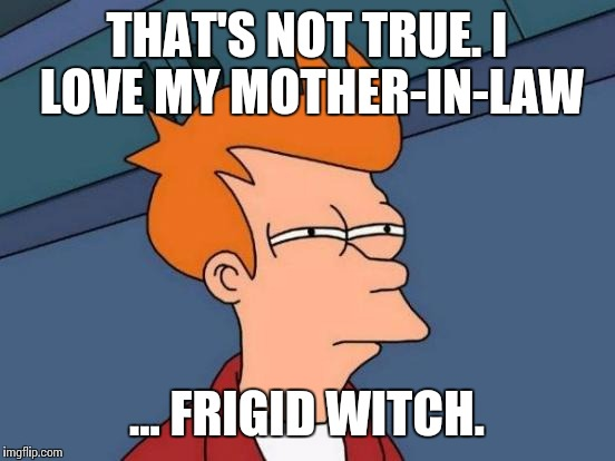 Futurama Fry Meme | THAT'S NOT TRUE. I LOVE MY MOTHER-IN-LAW ... FRIGID WITCH. | image tagged in memes,futurama fry | made w/ Imgflip meme maker