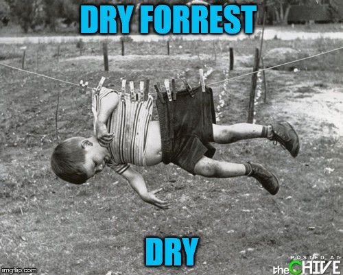 Maybe you should have ran. | DRY FORREST DRY | image tagged in memes,forrest gump | made w/ Imgflip meme maker