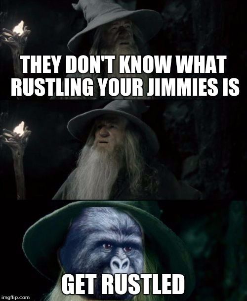 Confused Gandalf Rustling | THEY DON'T KNOW WHAT RUSTLING YOUR JIMMIES IS GET RUSTLED | image tagged in confused gandalf rustling | made w/ Imgflip meme maker