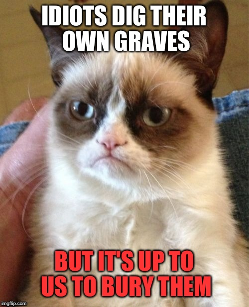 Some people just need a helping shovel | IDIOTS DIG THEIR OWN GRAVES BUT IT'S UP TO US TO BURY THEM | image tagged in memes,grumpy cat,funny | made w/ Imgflip meme maker