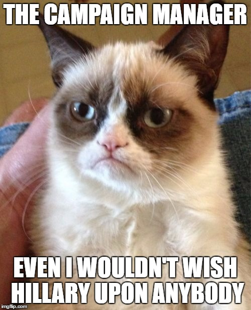 Grumpy Cat Meme | THE CAMPAIGN MANAGER EVEN I WOULDN'T WISH HILLARY UPON ANYBODY | image tagged in memes,grumpy cat | made w/ Imgflip meme maker