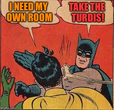 Batman Slapping Robin Meme | I NEED MY OWN ROOM TAKE THE TURDIS! | image tagged in memes,batman slapping robin | made w/ Imgflip meme maker