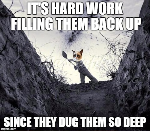 IT'S HARD WORK FILLING THEM BACK UP SINCE THEY DUG THEM SO DEEP | made w/ Imgflip meme maker
