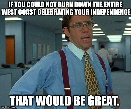 I mean, it is already hot enough. | IF YOU COULD NOT BURN DOWN THE ENTIRE WEST COAST CELEBRATING YOUR INDEPENDENCE THAT WOULD BE GREAT. | image tagged in memes,that would be great,4th of july,common sense,fireworks | made w/ Imgflip meme maker