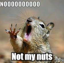 Not my nuts | made w/ Imgflip meme maker
