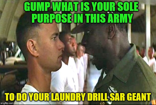 GUMP WHAT IS YOUR SOLE PURPOSE IN THIS ARMY TO DO YOUR LAUNDRY DRILL SAR GEANT | made w/ Imgflip meme maker