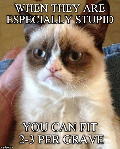Grumpy Cat Meme | WHEN THEY ARE ESPECIALLY STUPID YOU CAN FIT 2-3 PER GRAVE | image tagged in memes,grumpy cat | made w/ Imgflip meme maker