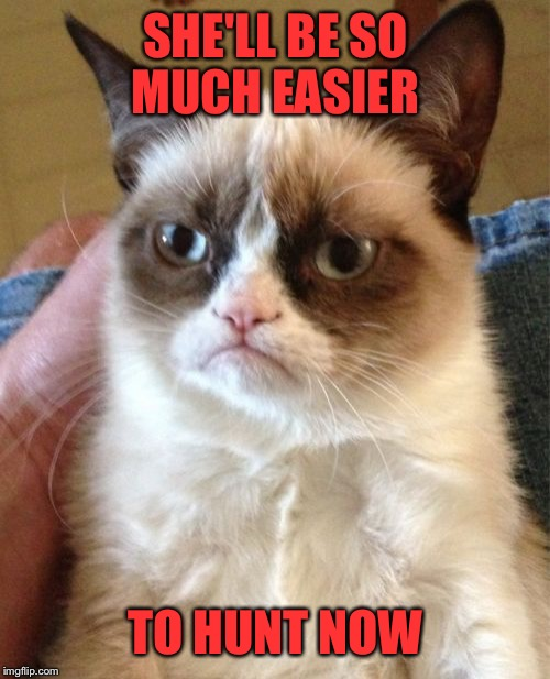 Grumpy Cat Meme | SHE'LL BE SO MUCH EASIER TO HUNT NOW | image tagged in memes,grumpy cat | made w/ Imgflip meme maker