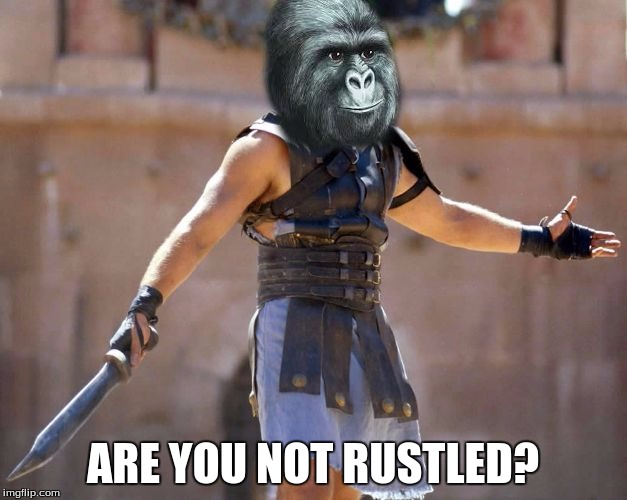 The Rustling Has Paused Momentarily  | ARE YOU NOT RUSTLED? | image tagged in are you not entertained rustled,are you not entertained,rustle my jimmies,memes | made w/ Imgflip meme maker