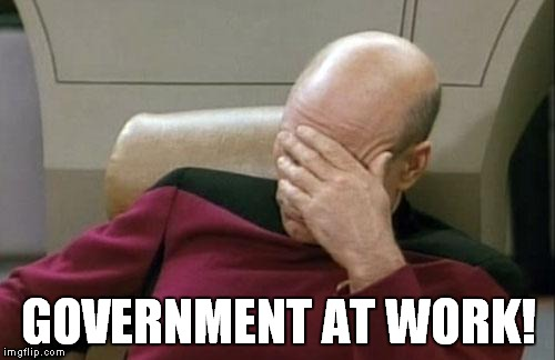 Captain Picard Facepalm Meme | GOVERNMENT AT WORK! | image tagged in memes,captain picard facepalm | made w/ Imgflip meme maker