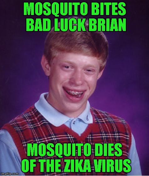 Bad Luck Brian Meme | MOSQUITO BITES BAD LUCK BRIAN MOSQUITO DIES OF THE ZIKA VIRUS | image tagged in memes,bad luck brian | made w/ Imgflip meme maker