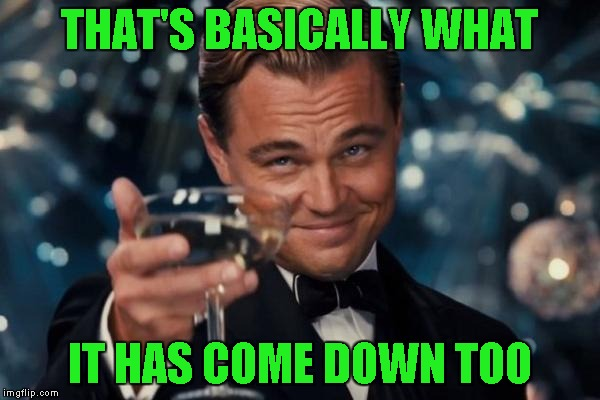 Leonardo Dicaprio Cheers Meme | THAT'S BASICALLY WHAT IT HAS COME DOWN TOO | image tagged in memes,leonardo dicaprio cheers | made w/ Imgflip meme maker