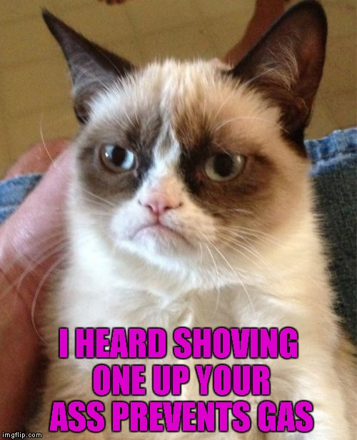 Grumpy Cat Meme | I HEARD SHOVING ONE UP YOUR ASS PREVENTS GAS | image tagged in memes,grumpy cat | made w/ Imgflip meme maker