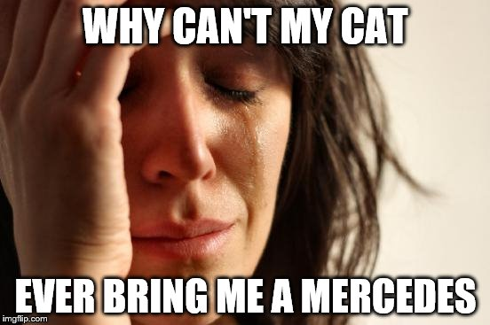 I GUESS the dead bird was a nice sentiment and all.  | WHY CAN'T MY CAT EVER BRING ME A MERCEDES | image tagged in memes,first world problems | made w/ Imgflip meme maker