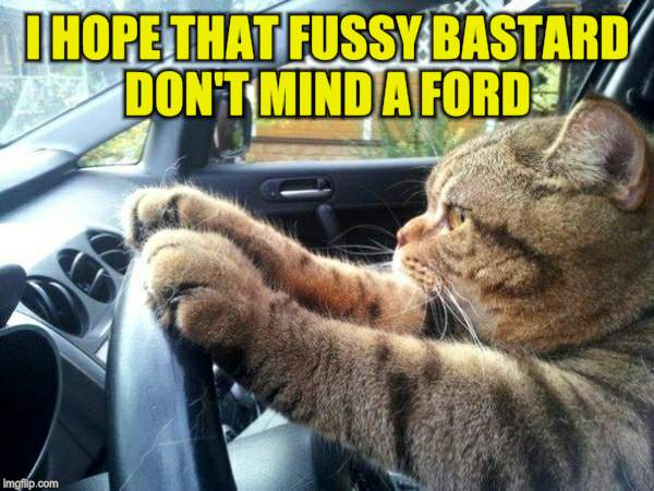 I HOPE THAT FUSSY BASTARD DON'T MIND A FORD | made w/ Imgflip meme maker