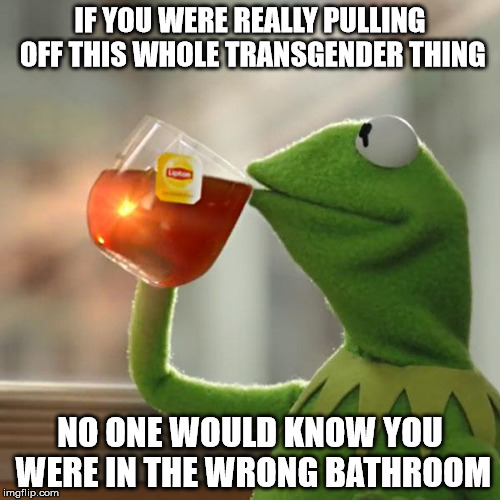 But Thats None Of My Business Meme | IF YOU WERE REALLY PULLING OFF THIS WHOLE TRANSGENDER THING NO ONE WOULD KNOW YOU WERE IN THE WRONG BATHROOM | image tagged in memes,but thats none of my business,kermit the frog | made w/ Imgflip meme maker