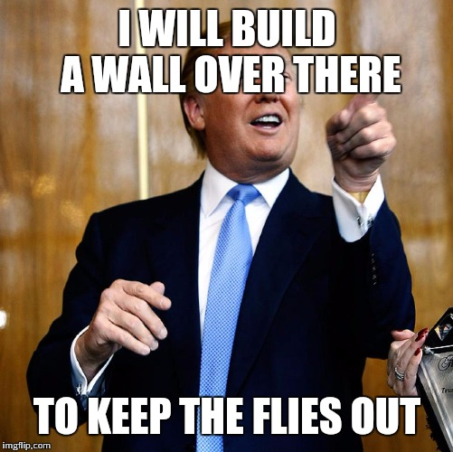 I WILL BUILD A WALL OVER THERE TO KEEP THE FLIES OUT | made w/ Imgflip meme maker