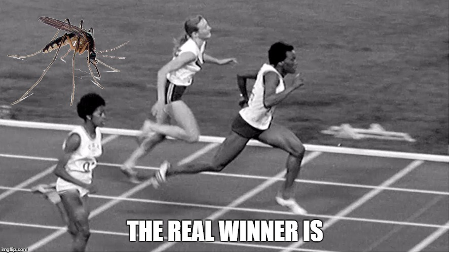 you better run | THE REAL WINNER IS | image tagged in memes,zika virus,first world problems,oylimpics 2016 rio,sport memes,fear | made w/ Imgflip meme maker