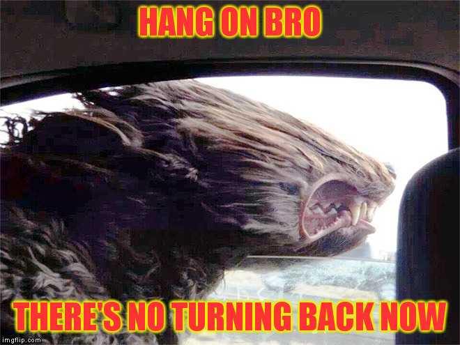 HANG ON BRO THERE'S NO TURNING BACK NOW | made w/ Imgflip meme maker