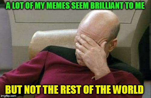 Captain Picard Facepalm Meme | A LOT OF MY MEMES SEEM BRILLIANT TO ME BUT NOT THE REST OF THE WORLD | image tagged in memes,captain picard facepalm | made w/ Imgflip meme maker
