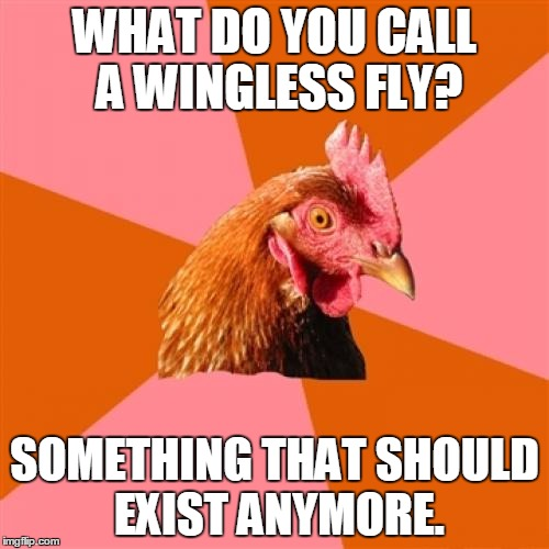 Anti-Joke Chicken, I'm Not So Sure How This Template Works... | WHAT DO YOU CALL A WINGLESS FLY? SOMETHING THAT SHOULD EXIST ANYMORE. | image tagged in anti-joke chicken,memes,funny,anti-joke,not funny,i dont know | made w/ Imgflip meme maker