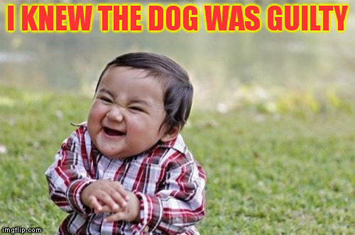 Evil Toddler Meme | I KNEW THE DOG WAS GUILTY | image tagged in memes,evil toddler | made w/ Imgflip meme maker