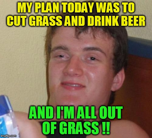 10 Guy Meme | MY PLAN TODAY WAS TO CUT GRASS AND DRINK BEER AND I'M ALL OUT OF GRASS !! | image tagged in memes,10 guy,grass,funny meme,jokes,beer | made w/ Imgflip meme maker