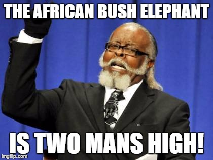 "Yes, I know I said ""Mans."" Men wouldn't rhyme. 