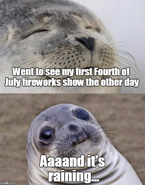 I guess I'll have to wait 'till next year | Went to see my first Fourth of July fireworks show the other day Aaaand it's raining... | image tagged in memes,short satisfaction vs truth,trhtimmy,independence day | made w/ Imgflip meme maker