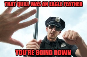 THAT QUILL WAS AN EAGLE FEATHER YOU'RE GOING DOWN | made w/ Imgflip meme maker
