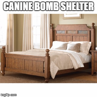 CANINE BOMB SHELTER | made w/ Imgflip meme maker