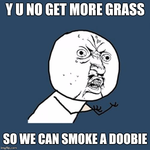 Y U No Meme | Y U NO GET MORE GRASS SO WE CAN SMOKE A DOOBIE | image tagged in memes,y u no | made w/ Imgflip meme maker