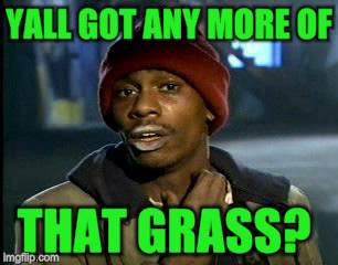 Y'all Got Any More Of That Meme | YALL GOT ANY MORE OF THAT GRASS? | image tagged in memes,yall got any more of | made w/ Imgflip meme maker