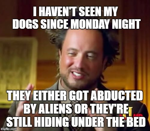 Ancient Aliens Meme | I HAVEN'T SEEN MY DOGS SINCE MONDAY NIGHT THEY EITHER GOT ABDUCTED BY ALIENS OR THEY'RE STILL HIDING UNDER THE BED | image tagged in memes,ancient aliens | made w/ Imgflip meme maker