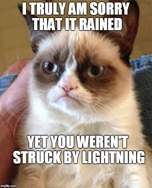 Grumpy Cat Meme | I TRULY AM SORRY THAT IT RAINED YET YOU WEREN'T STRUCK BY LIGHTNING | image tagged in memes,grumpy cat | made w/ Imgflip meme maker