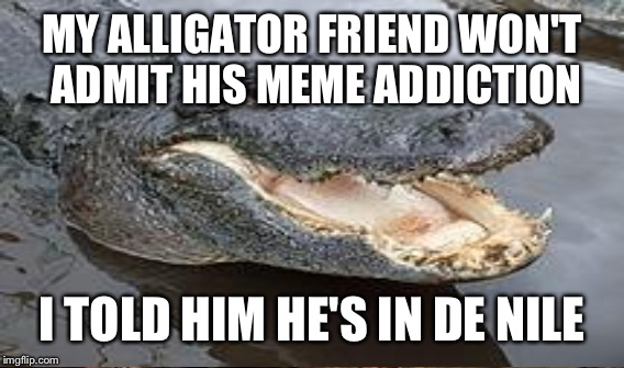 MY ALLIGATOR FRIEND WON'T ADMIT HIS MEME ADDICTION I TOLD HIM HE'S IN DE NILE | made w/ Imgflip meme maker