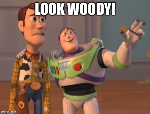 X, X Everywhere Meme | LOOK WOODY! | image tagged in memes,x x everywhere | made w/ Imgflip meme maker