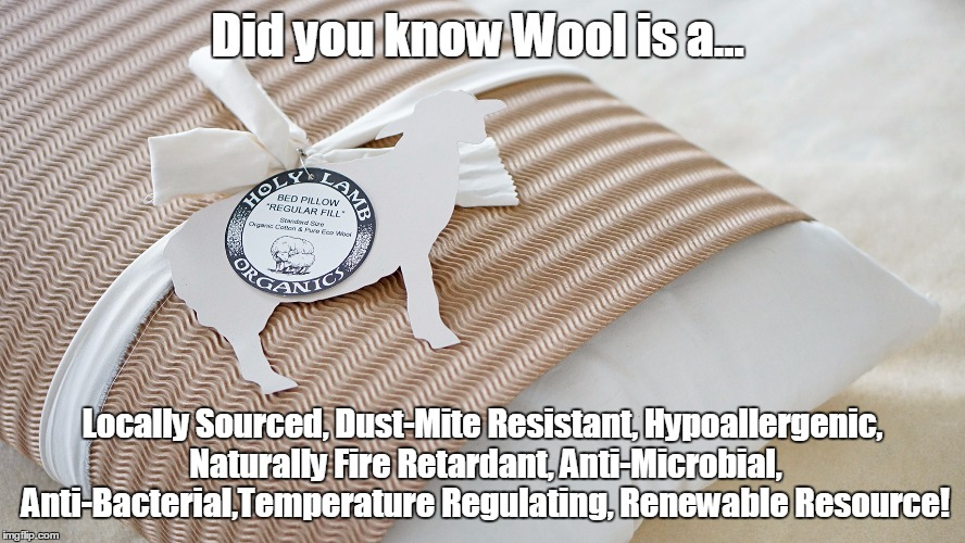 Wool Benefits | Did you know Wool is a... Locally Sourced, Dust-Mite Resistant, Hypoallergenic, Naturally Fire Retardant, Anti-Microbial, Anti-Bacterial,Tem | image tagged in wool,bedding,sleep,allergies | made w/ Imgflip meme maker