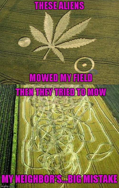 I guess I used a little too much Round Up! | THESE ALIENS MOWED MY FIELD THEN THEY TRIED TO MOW MY NEIGHBOR'S...BIG MISTAKE | image tagged in marijuana crop circle,memes,crop circles,funny,fields of dreams | made w/ Imgflip meme maker