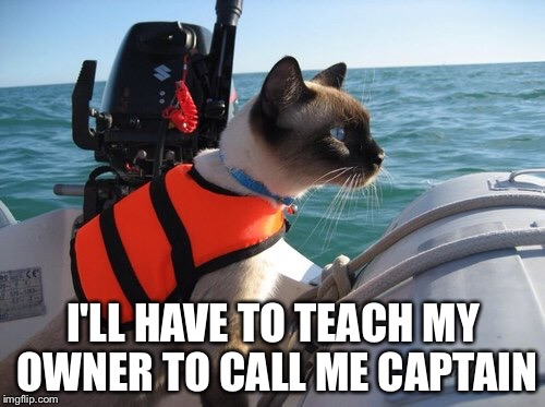 I'LL HAVE TO TEACH MY OWNER TO CALL ME CAPTAIN | made w/ Imgflip meme maker
