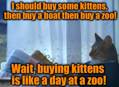 I should buy some kittens, then buy a boat then buy a zoo! Wait, buying kittens is like a day at a zoo! | made w/ Imgflip meme maker