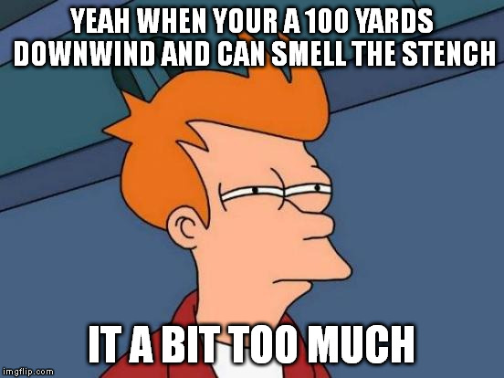 Futurama Fry Meme | YEAH WHEN YOUR A 100 YARDS DOWNWIND AND CAN SMELL THE STENCH IT A BIT TOO MUCH | image tagged in memes,futurama fry | made w/ Imgflip meme maker