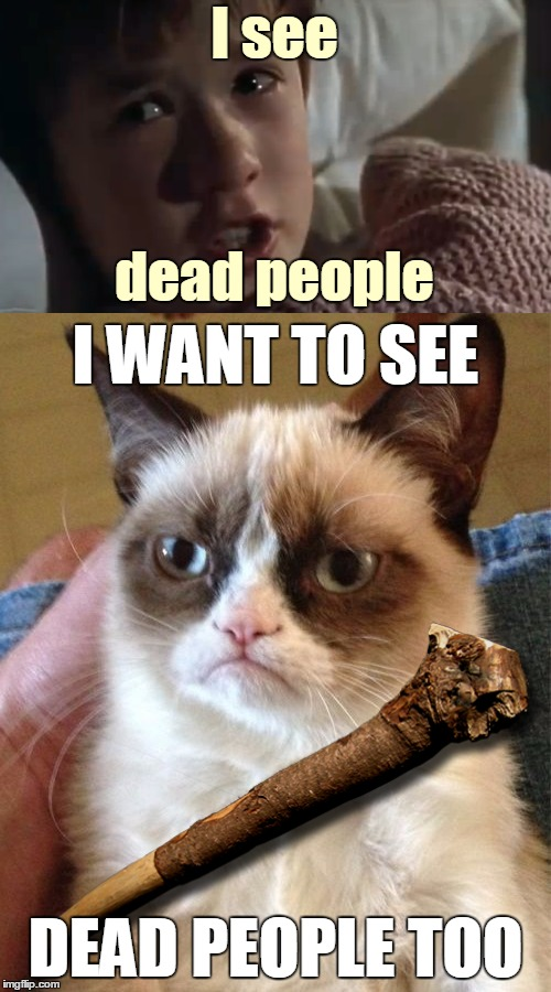 Our memes are numbered :) | I see DEAD PEOPLE TOO I WANT TO SEE dead people | image tagged in memes,maim,grumpy cat,grumpy cat weight loss program,i see dead people,movies | made w/ Imgflip meme maker