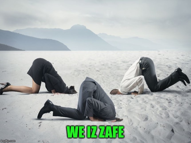 WE IZ ZAFE | made w/ Imgflip meme maker